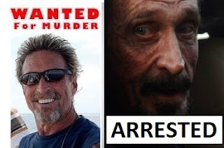 McAfee's Rise And Downfall Via Technology