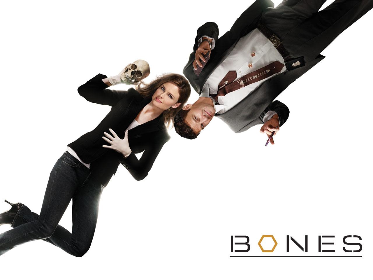 Urbanised Geek Tv Series Bones Season One