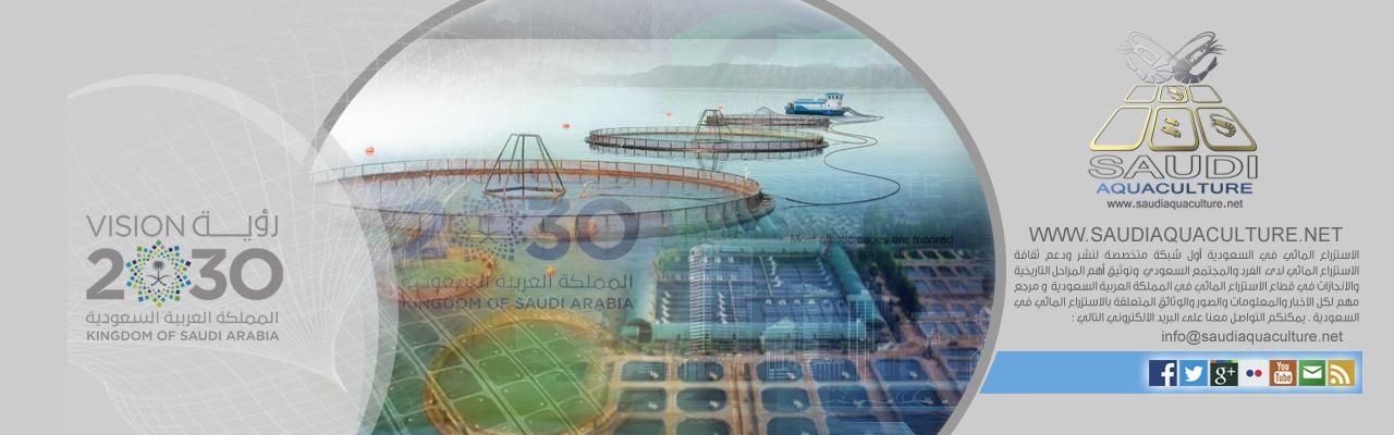 saudi aquaculture  ألإستزراع السمكي في السعودية