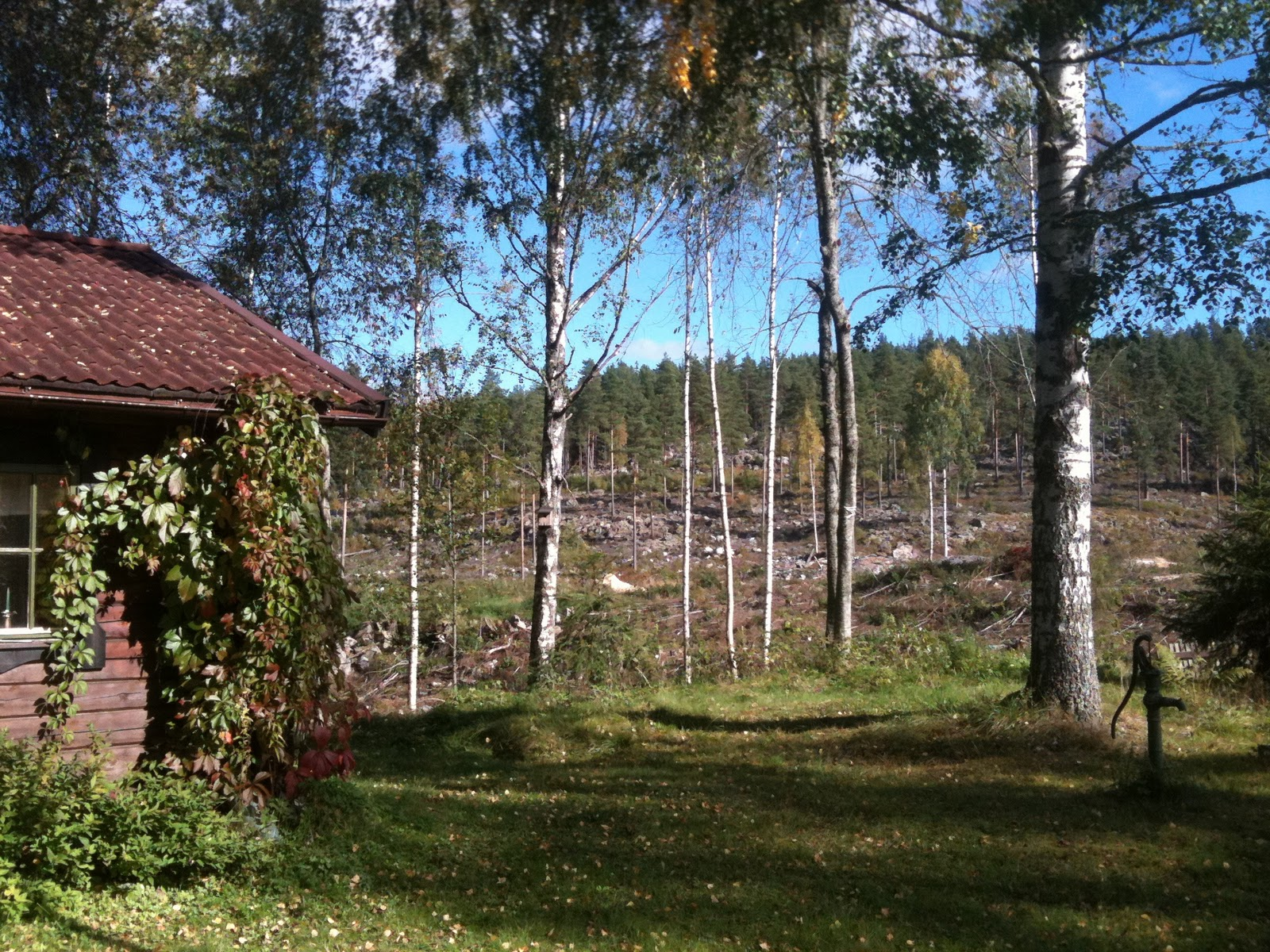 Fröken ekoreko: september 2011