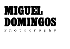 Miguel Domingos Photography