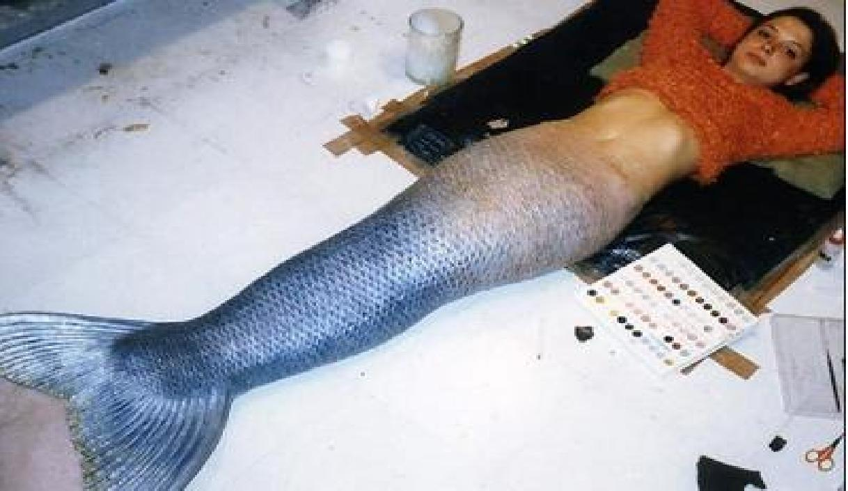 Real Mermaid Tails http://mermaidnarina.blogspot.com/2012/09/one-of-most-realistic-tails.html