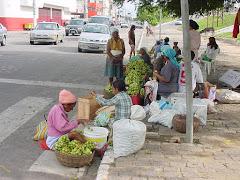 A venda de imbu na cidade