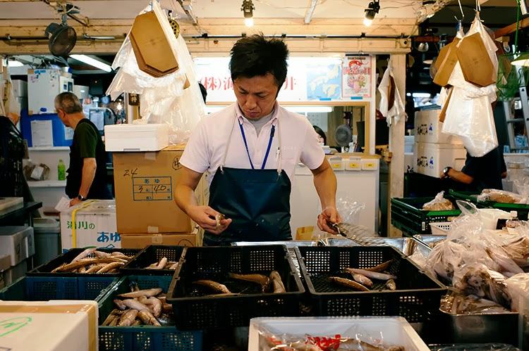 Tsukji Fish Market, Tokyo Japan