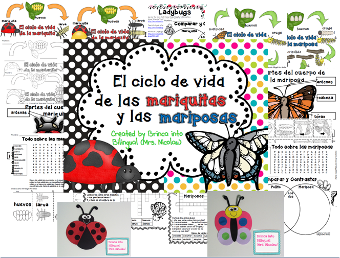 http://kinderbilinguebyjuliana.blogspot.com/2015/04/stop-swap-and-roll-party.html