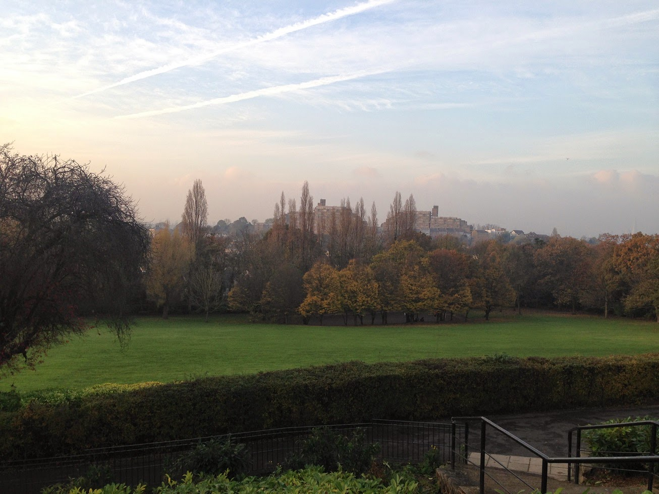 View from Horniman Gardens, Forest Hill, London