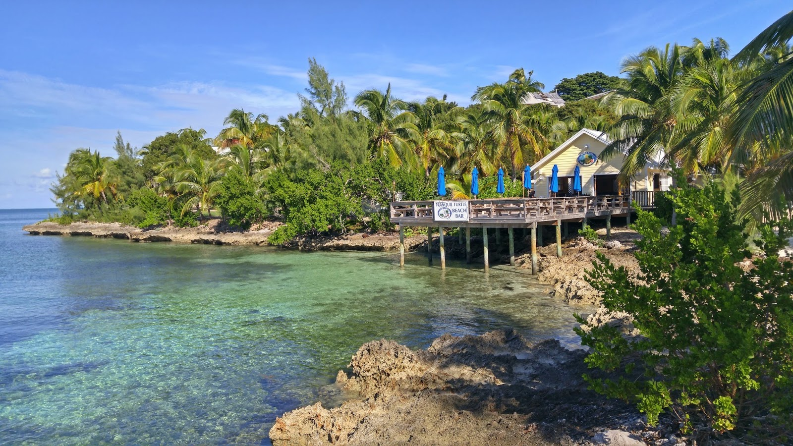 House rentals green turtle cay - The Bluff House Green Turtle Cay Bahamas