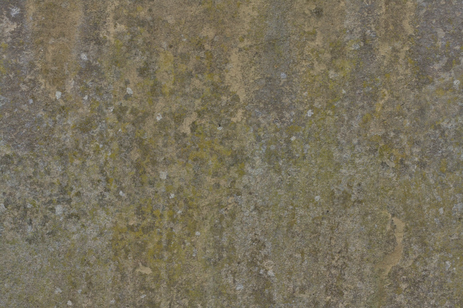 Stucco wall grunge feb_2015_2 texture 4770x3178