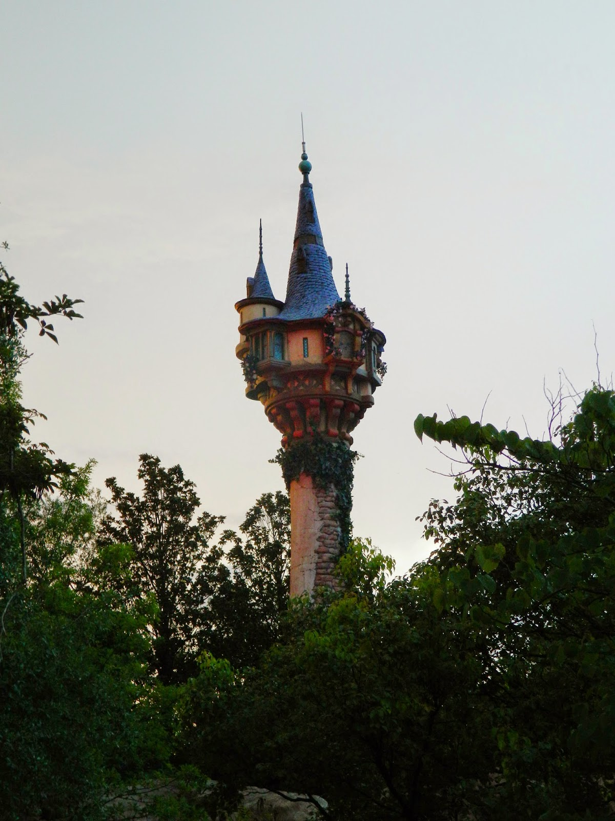 disney world sunset tangled tower
