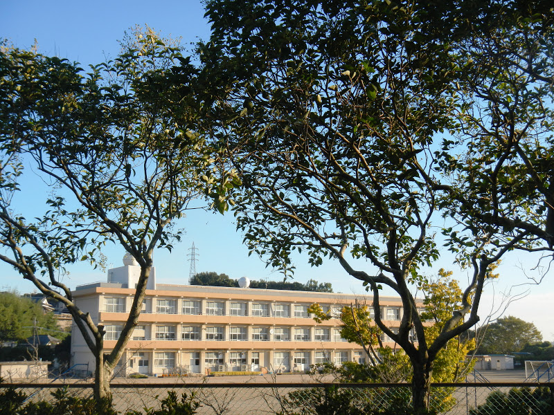 Japanese school building and grounds