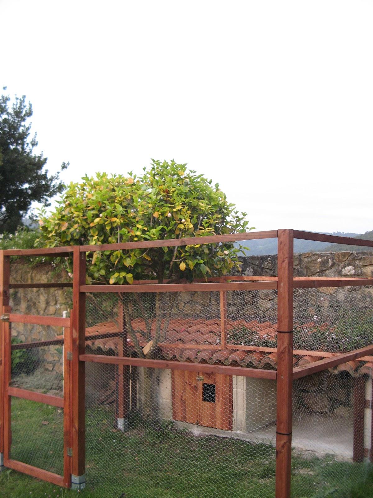 Diario de mi jard n el gallinero the chiken coop for Gallinero jardin