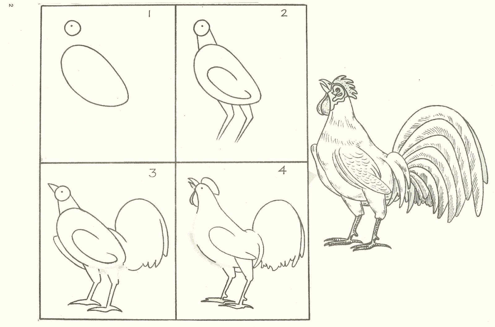 studentsdrawing animal step by step easy outline drawing bird