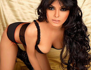 Sherlin Chopra sexy wet photos