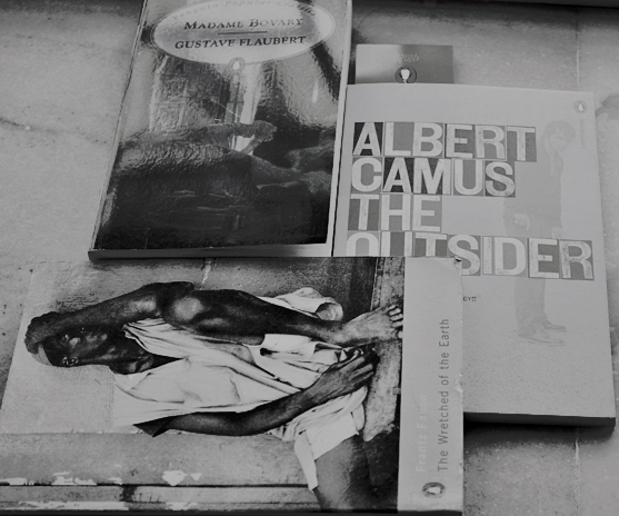 madame bovary, the wretched of the earth, frantz fanon, the outsider, albert camus