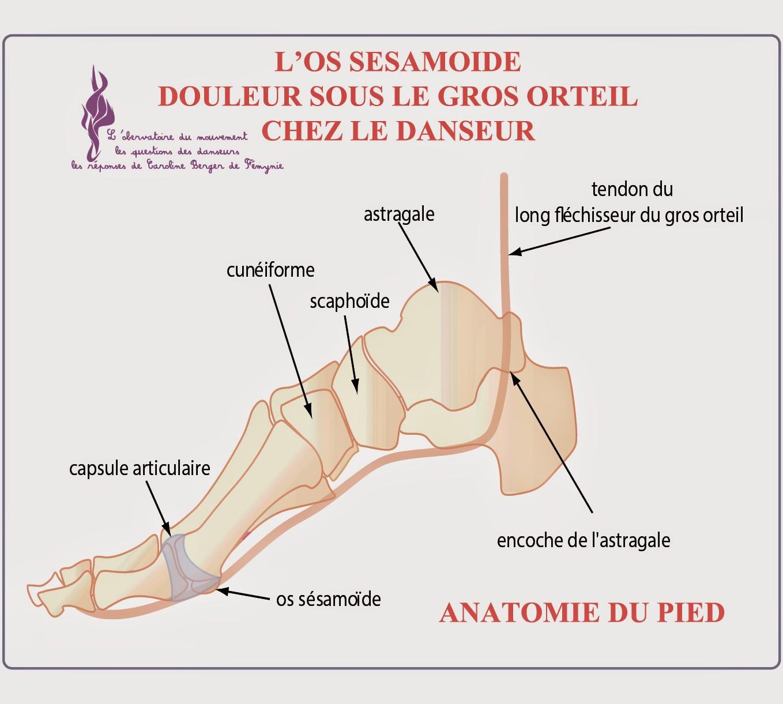 douleur pied gros orteil