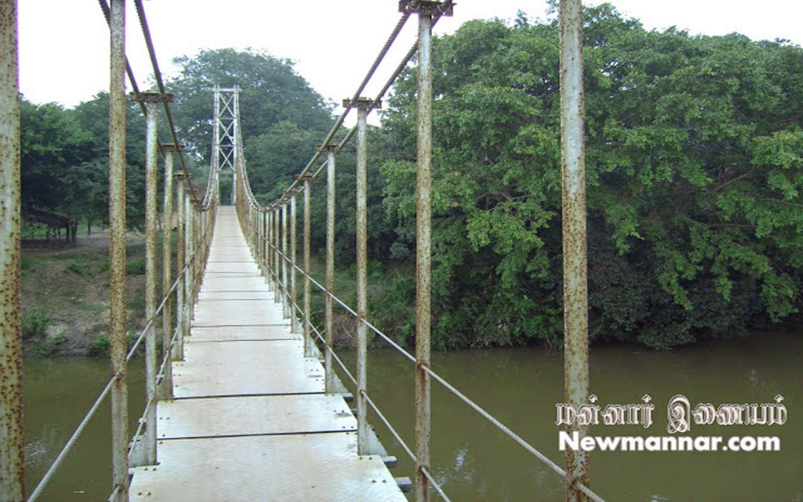 Mannar hanging bridge