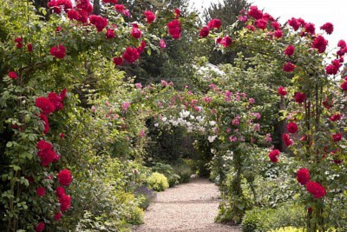 Diario de una desconocida noviembre 2012 for Arcos para jardin