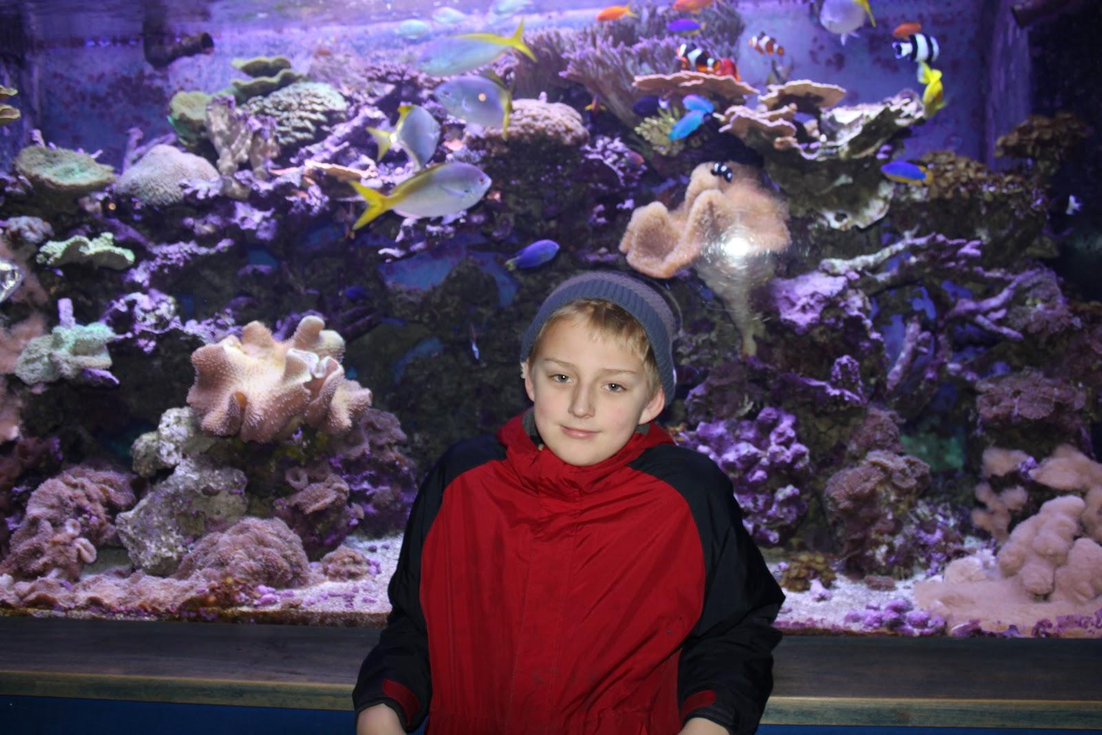 The Living Planet Aquarium Salt Lake City