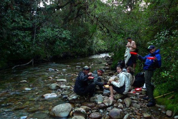 Diksusi SIEJ-YLI Update Kondisi Ekosistem Leuser