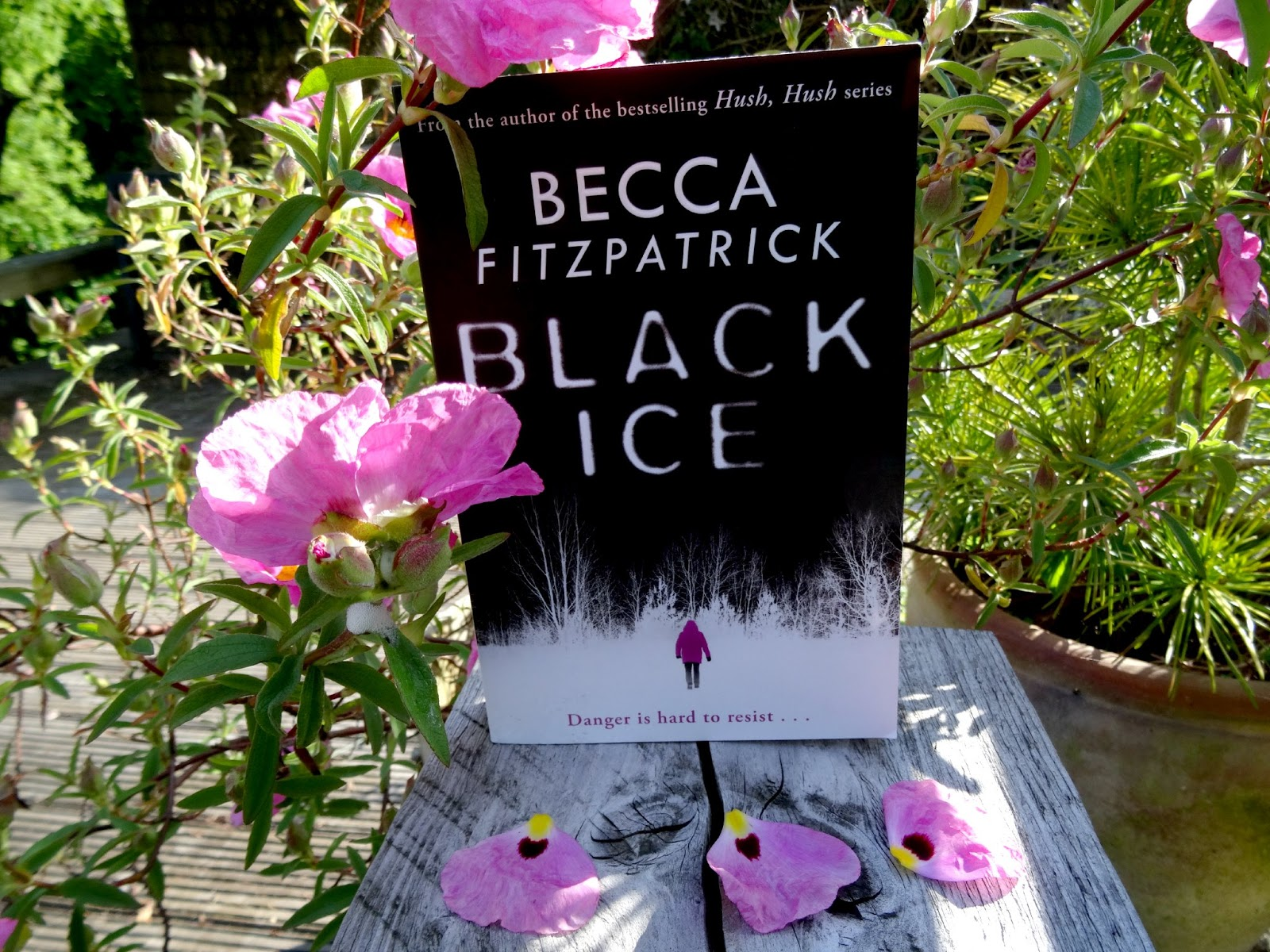Becca Fitzpatrick Black Ice review