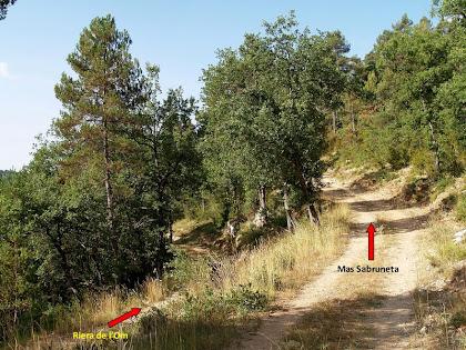 Encreuament de camins al Torrent de la Moretona