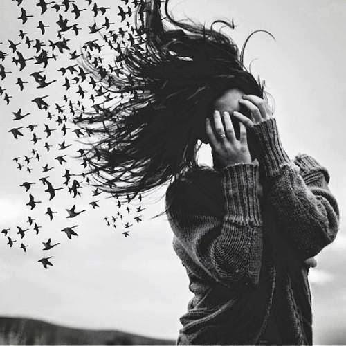 Saluda a los pájaros de mi cabeza.