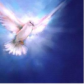"""""""Que o Espírito Santo Vos Roube o Coração"""".( F.A.M)."""