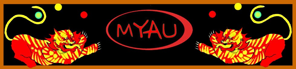 MYAU encuentro de malabaristas de Albendiego