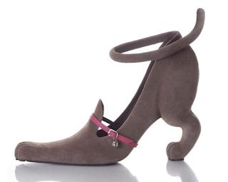 Zapato Can. Lacasamundo.com