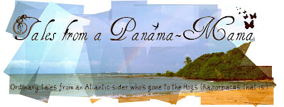 Tales from a Panamá-mama