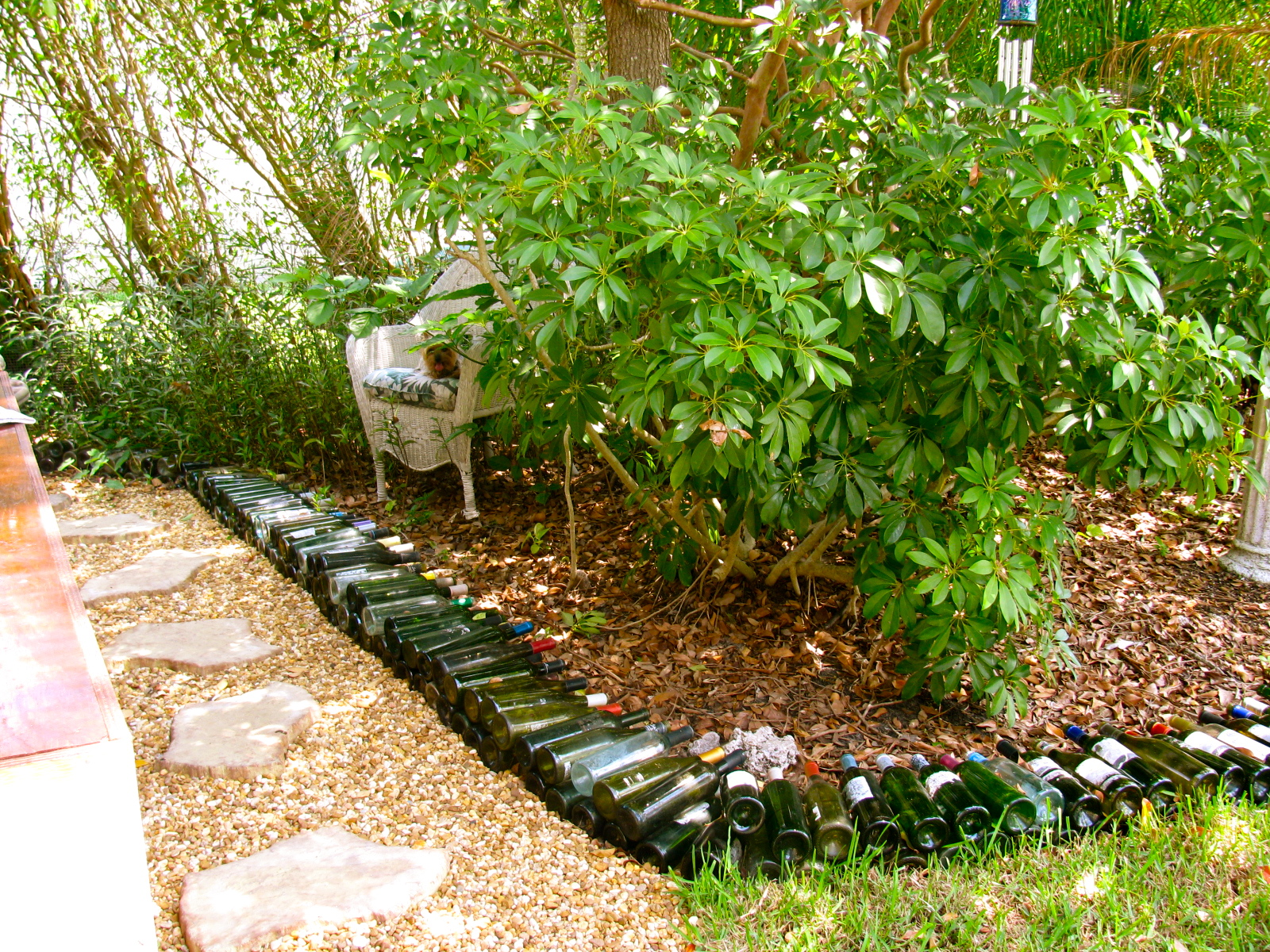 may days wine bottle garden border