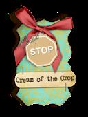 Wyróżnienie na blogu CROP STOP