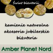 Amber Planet