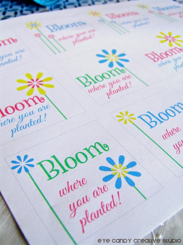 bloom where oyu are planted freebie, free download for snack pack, flowers, spring tag