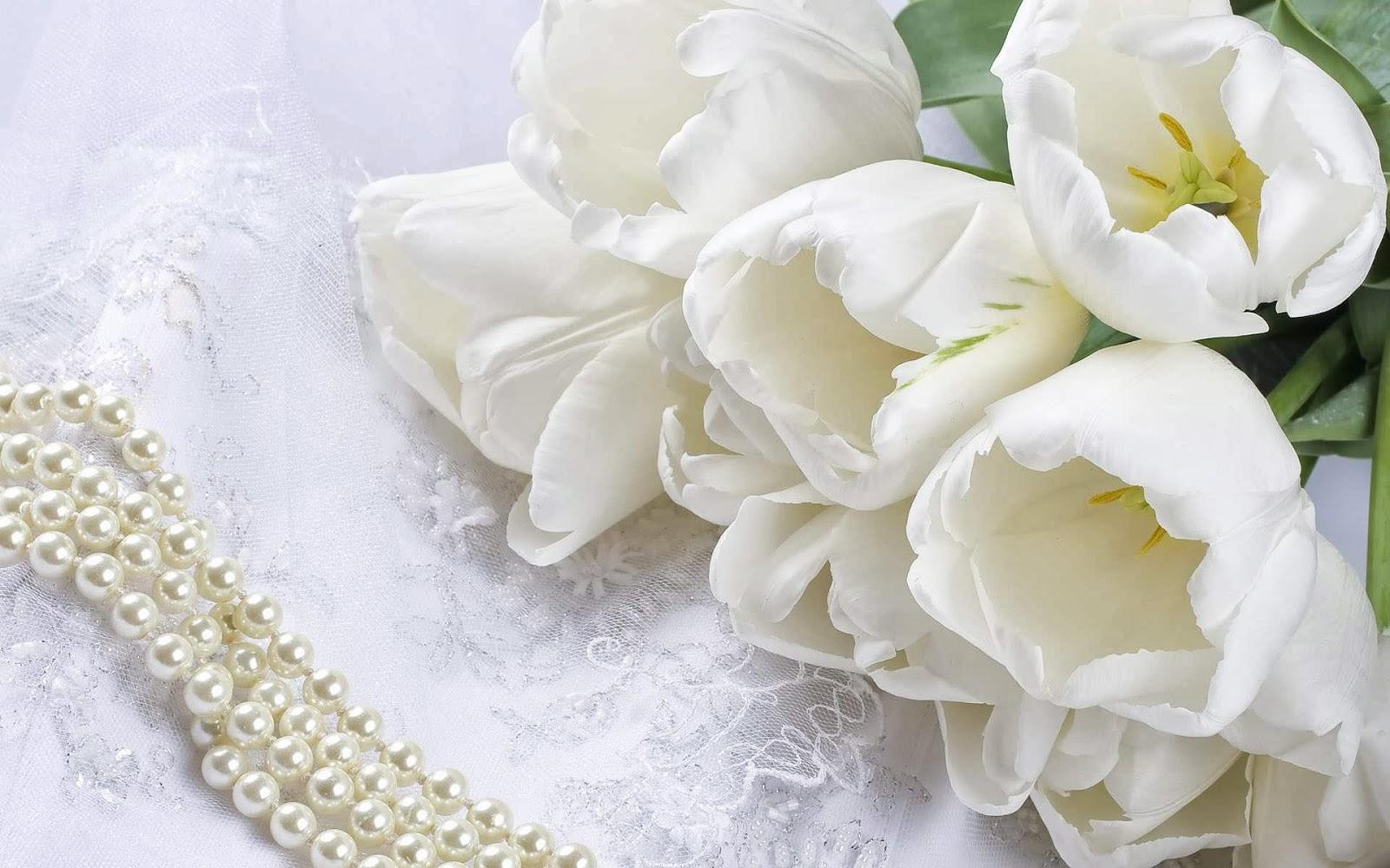 Gambar Rangkaian Bunga Mawar Putih Cantik