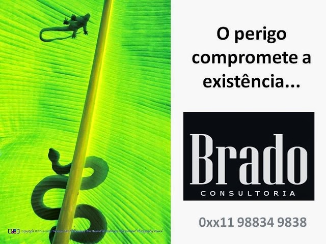 BRADO ASSOCIADOS