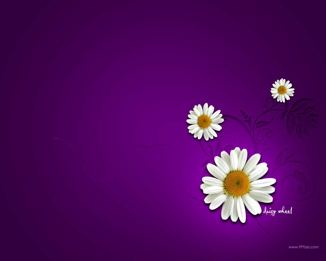 Flower Backgrounds For Desktops