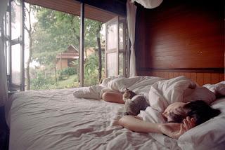 Durmiendo con gato