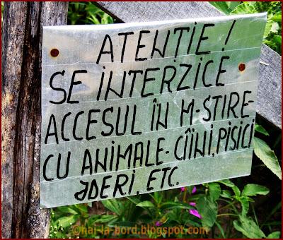 accesul interzis cu jderii corbii de piatra