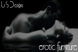USDesigns Erotic Furniture