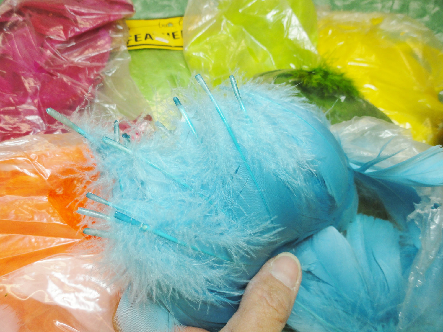 Bag Of Feathers3 Feathers