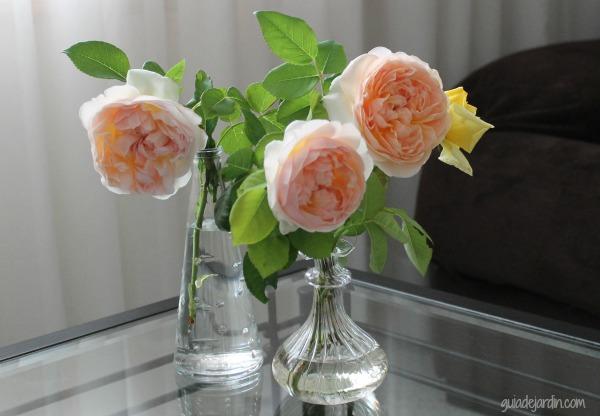 Ramos de rosas en el salón