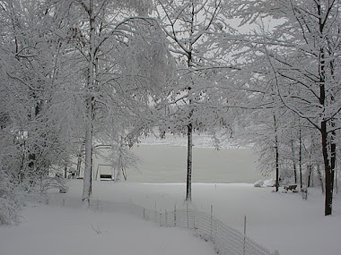 My Lake In Winter