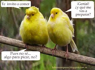 """""""aperitivos"""", """"cortesía"""", """"picar"""", """"pájaros"""""""