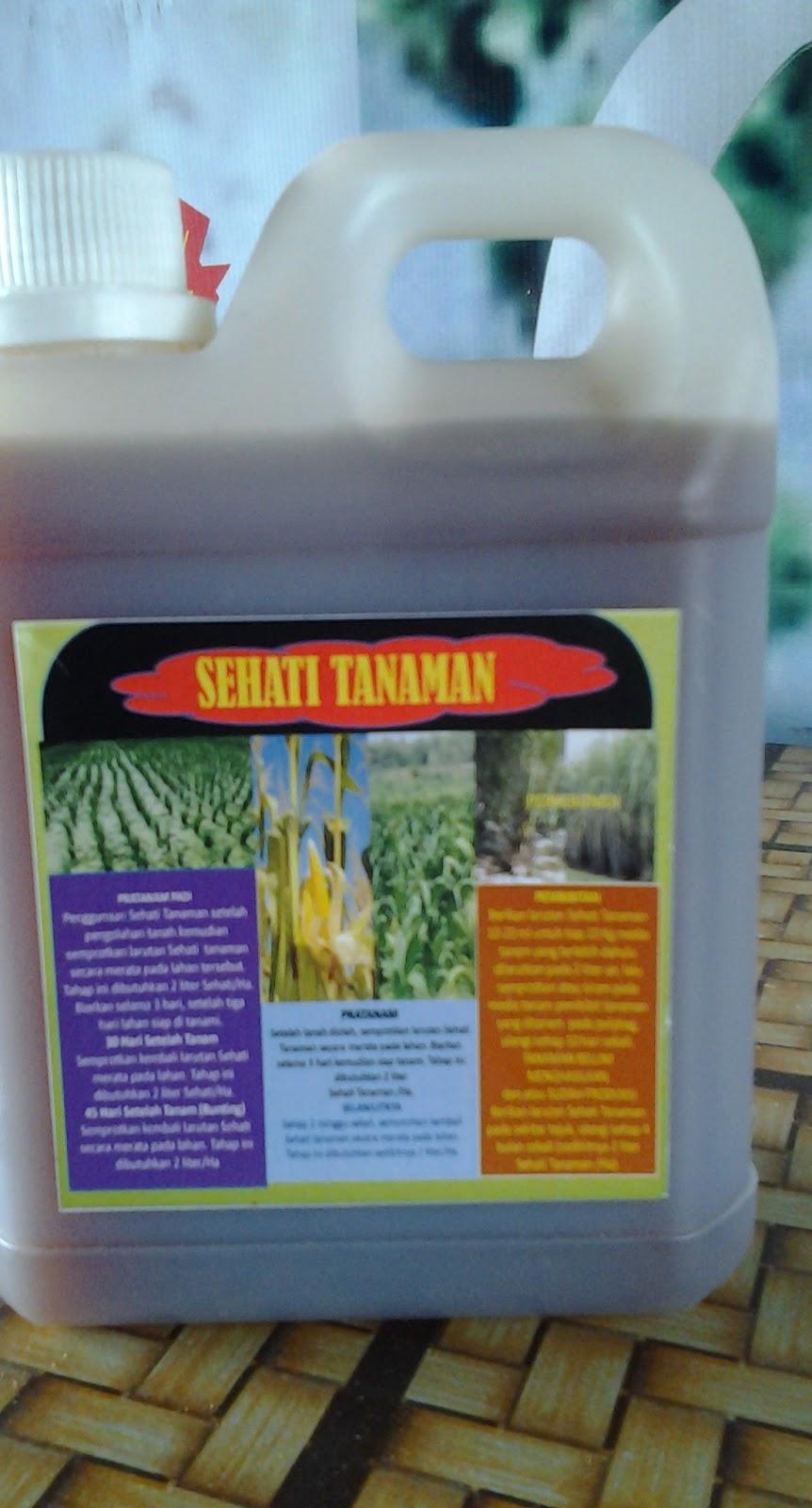 Pertanian - Sehati Tanaman