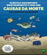 CONDUTA CONSCIÊNTE EM AMBIENTES NATURAIS - MMA