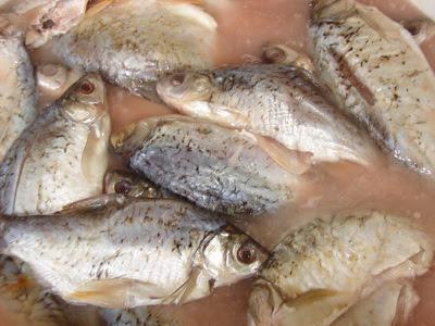 สูตรการทำปลาส้มรสเด็ด