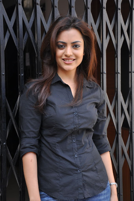 nisha agarwal new @ solo sucess meet glamour  images