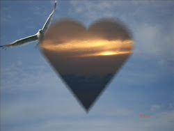 Iubire cu aripi!