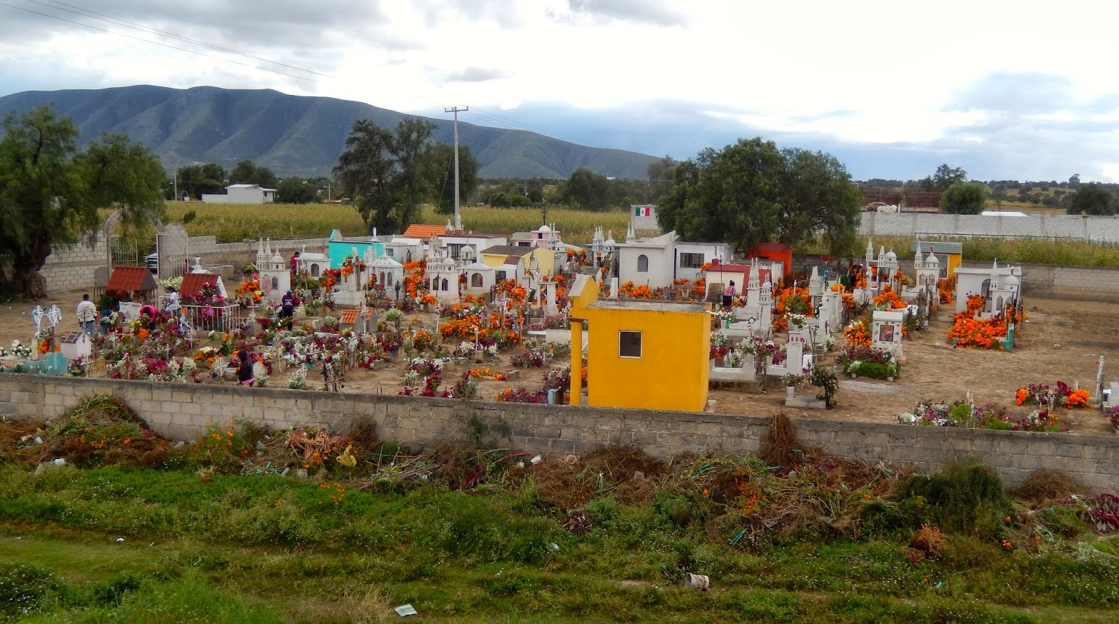ofrenda, flores, mexico, noche difuntos